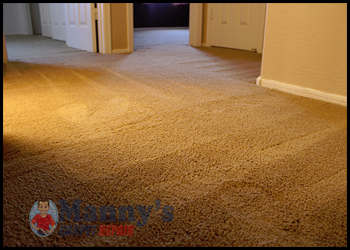 Carpet Repair Tampa Fl Don T Replace It Repair It We